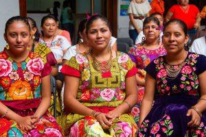 ¿Cuáles son los grupos indígenas de México?