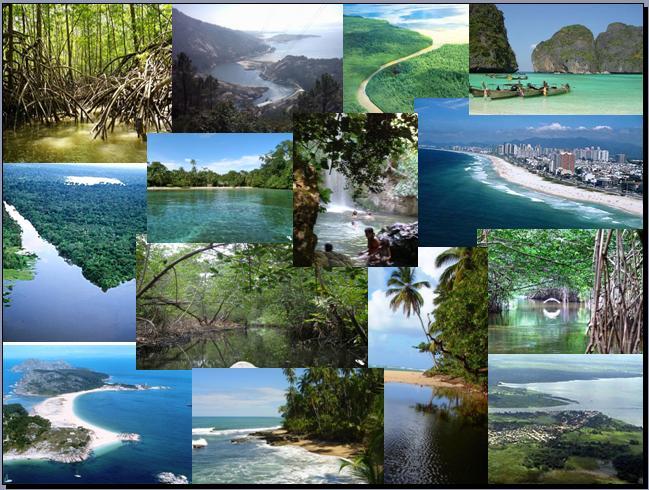 ¿Cuáles son los ecosistemas de México?