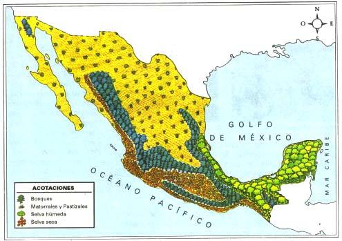 ¿Cuáles son las regiones naturales de México?