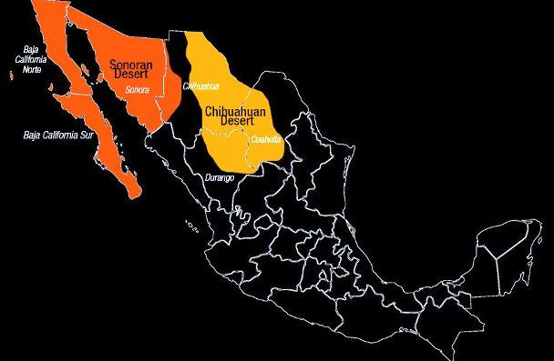 Principales desiertos de México