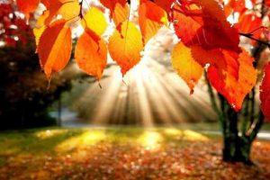 ¿Cuándo empieza el otoño en México?